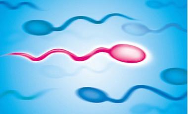 男人精子活力低下和哪些因素有关系